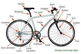 Buy Bicycle Nuts