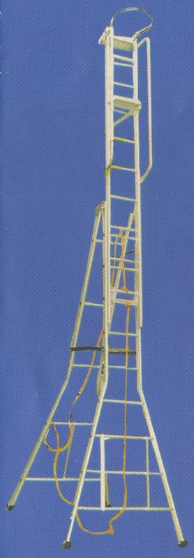 Buy  SELF SUPPORT EXTENDABLE LADDER