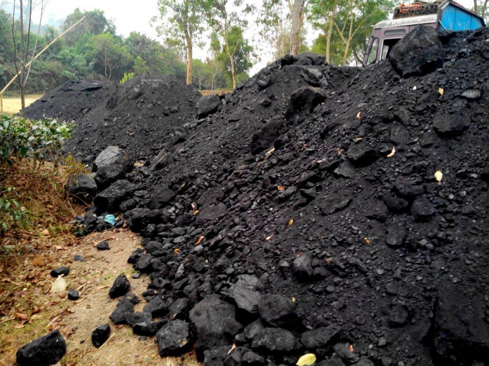 Buy Nagaland Coal