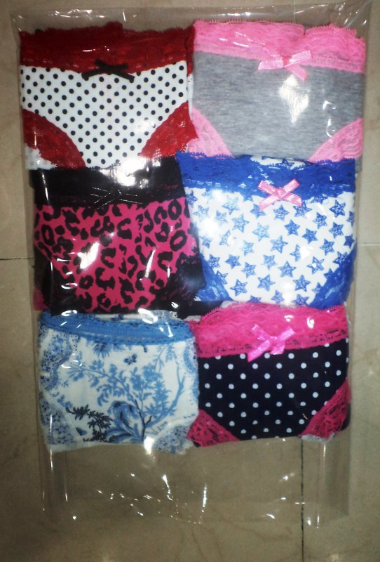Ladies Panties Secret Posession Printed designs product of Primark In Wholesale (12 Pc Pack)