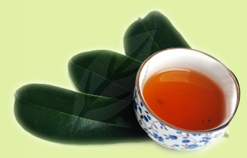 Buy Graviola Soursop Leaves Tea