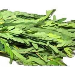 Buy Agathi Keerai