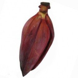 Buy Banana Flower