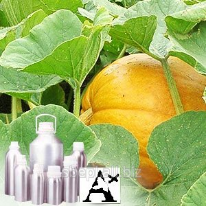 Water Melon Oil