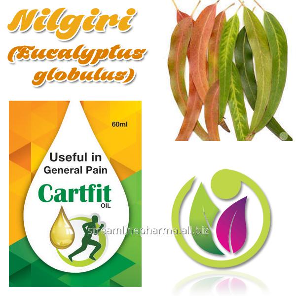 Buy Nilgiri (Eucalyptus globulus)