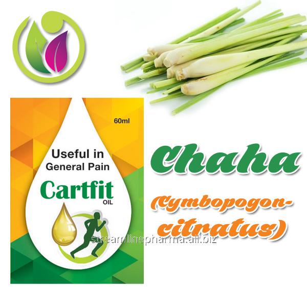 Buy Chaha (Cymbopogon citratus)