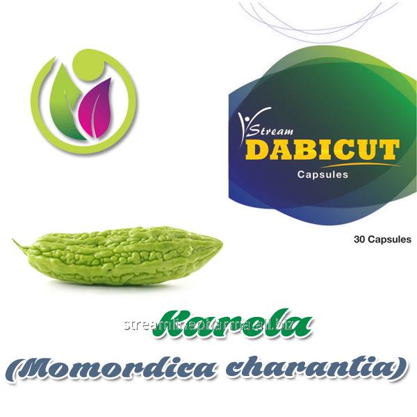 Buy Karela (Momordica charantia)