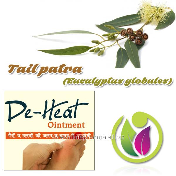 Buy Tail patra (Eucalyptus globules)