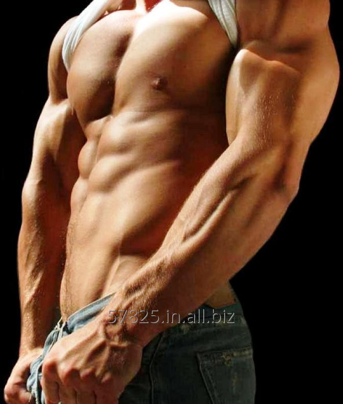 Steroids Fitness