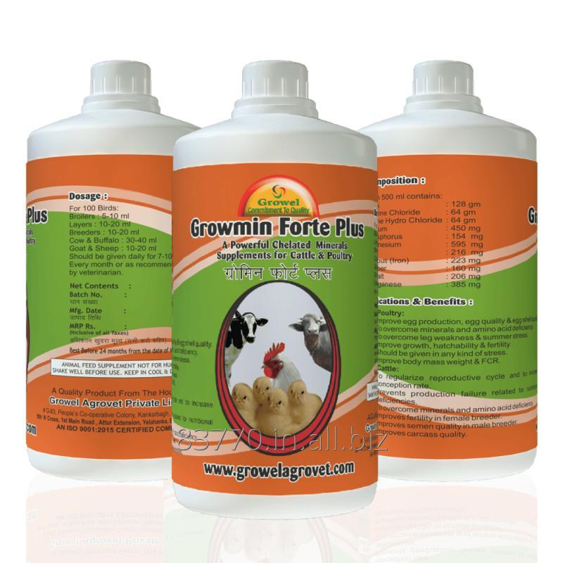 Buy A Powerful Chelated Minerals Supplements for Cattle & Poultry