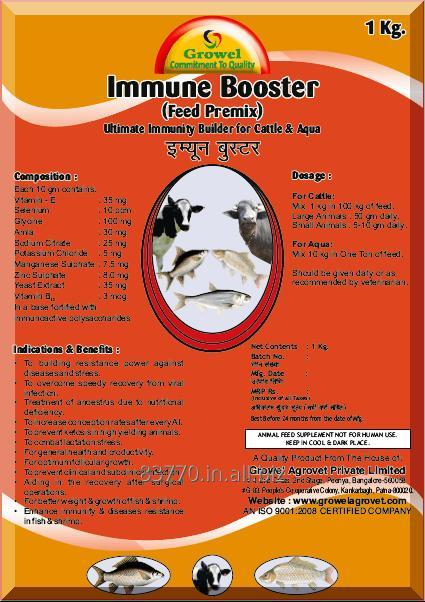 Buy Powerful Immunity Builder for Cattle & Aqua