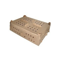 Buy Corrugated Chick Boxes