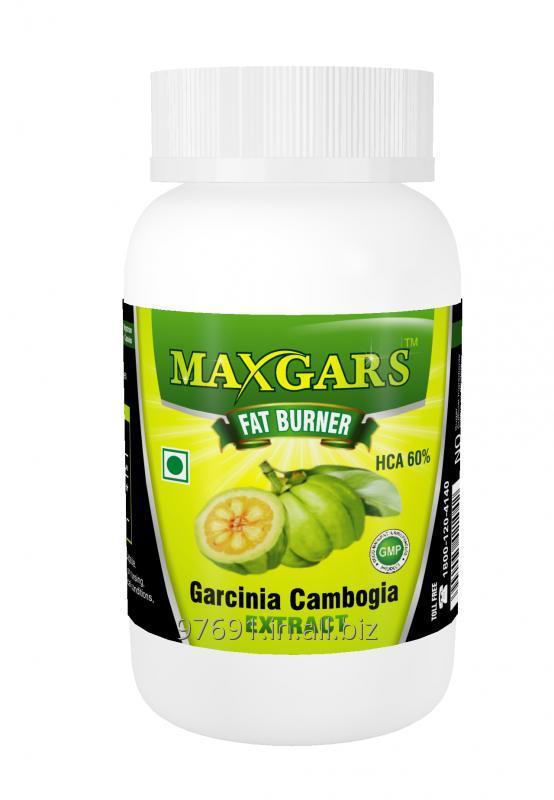 Buy Maxgars Garcinia Cambogia Extract With 60% HCA 60 Capsules