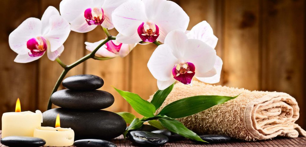 Buy Amrita Body to Body Massage