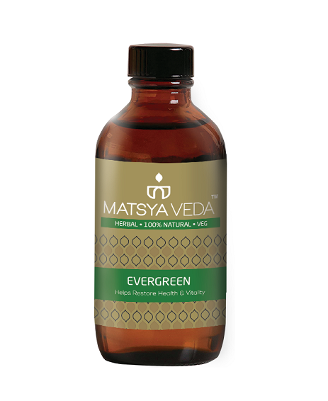 Buy Evergreen (Restore Health & Vitality) Syrup