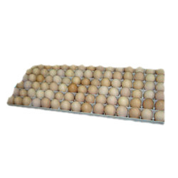 Buy 90 Eggs Setting Tray