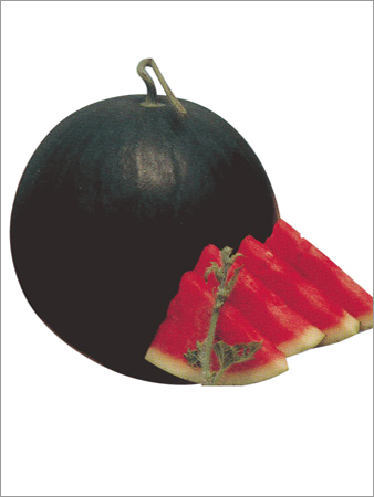 Buy Watermelon hybrid sitara seed