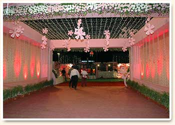 Tent Pink Theme & Tent Pink Theme buy in Jaipur