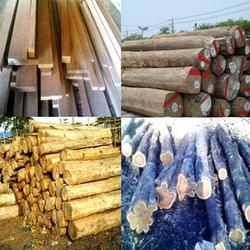 Buy Teak Wood Logs