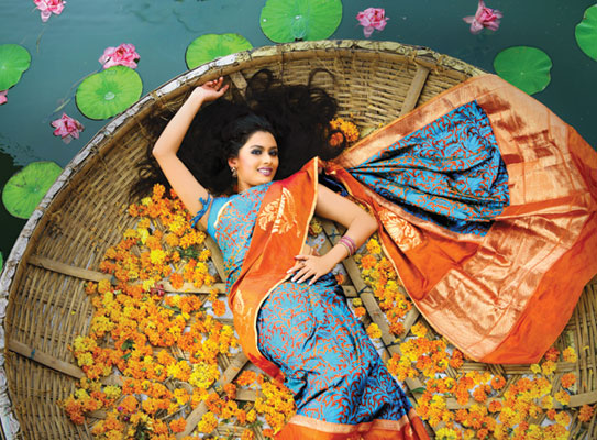 Sarees and Blouses Fashion