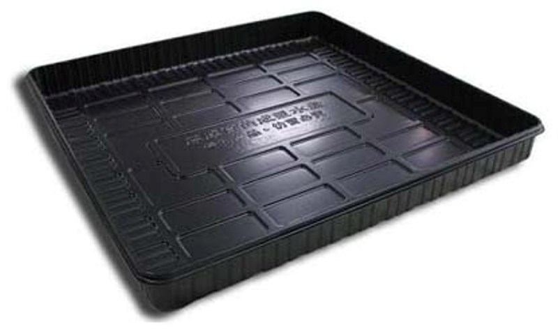 Buy Tobacco seed tray