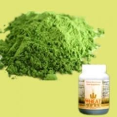 Prime Healthwheatgrass powder