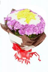 Chrysanthimum and carnation