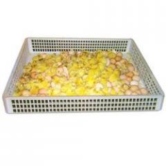 Plastic Egg Hatcher Basket
