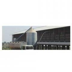 Feed Silo & Feed Conveyor