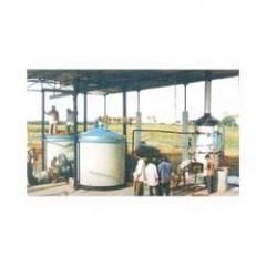 Essential Oil Plant for Lemongrass etc.