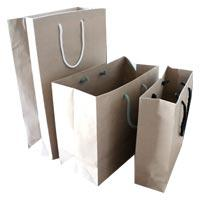 Multipurporse Paper Carry Bags