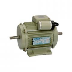 Double Side Shaft Electric Motor