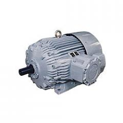 Flameproof Motors From Frame 80 To 315