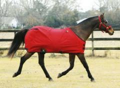 Equestrian Clothings