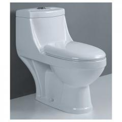 One Piece Toilet: Dual Flush 203