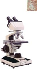 Educational Microscopy