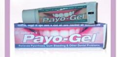 PAYOGEL GUM PASTE