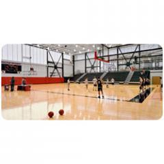 Basket Ball Courts
