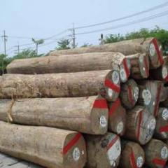 Silverwood Round Logs