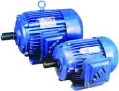Electric Motor (Single Phase & Three