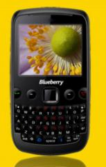 Blueberry Mini