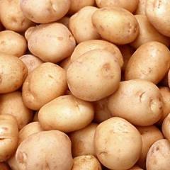 Potato,