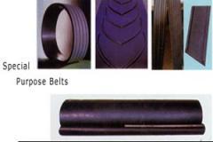 Special Customized Conveyor Belt