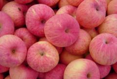 Fruits (Fuji apples from China)