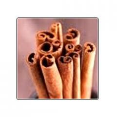 Cinnamon Bark Absolute