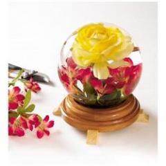 Rose Water Gulab Jal DBR-A