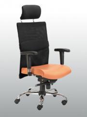 Premium Chairs Stanza