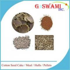Cotton Seed Products