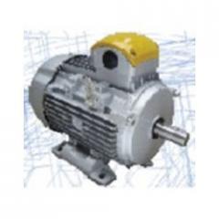 Crane Duty Motor (Reg. & Brake)