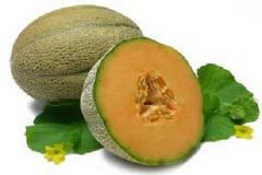 Musk Melon Seeds